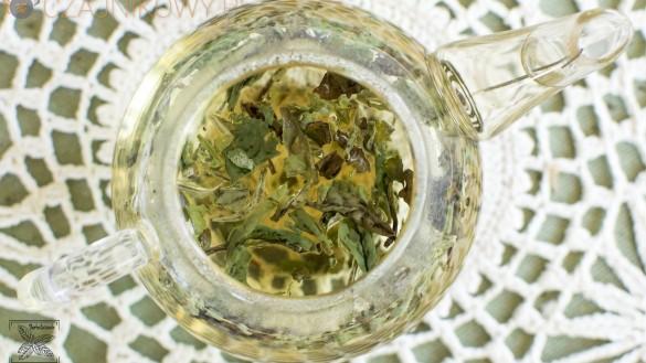 Biała Piwonia czyli Bai Mudan (Pai Mu Tan, Pai Mutan): Parzenie liści