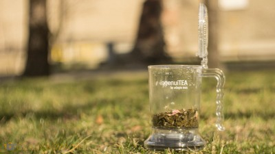 Najlepszy dzbanek do herbaty ingenuiTEA
