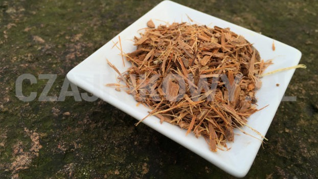 Herbata z Catuaby dobrze działa na problemy erekcją